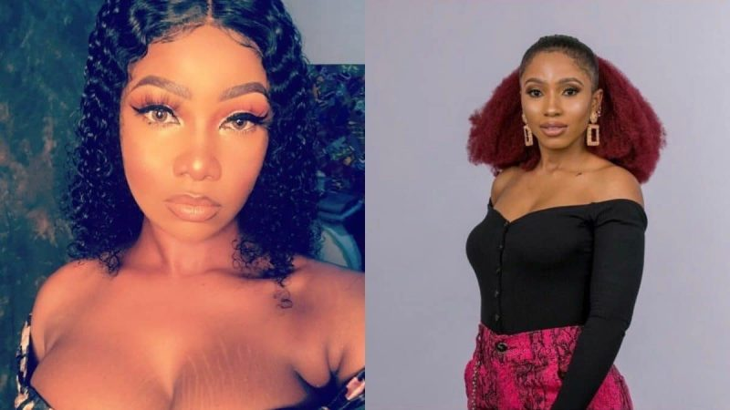 BBNaija: Audio Of Tacha's Fans Allegedly Conspiring To Vote Mercy Out Go Viral; Claims BBNaija Is Compromised